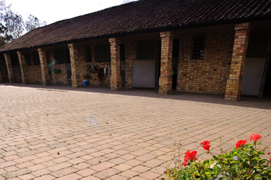 Home Stables
